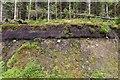 NM9204 : Exposed peat by Patrick Mackie
