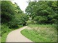 TQ5940 : Path in Hilberts Wood Nature Reserve by Marathon