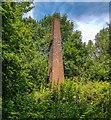 SJ8799 : Chimney by Peter McDermott