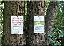 TG3204 : Notices on trees by Evelyn Simak