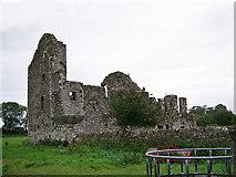 N7884 : Castles of Leinster: Robertstown, Meath (2) by Garry Dickinson