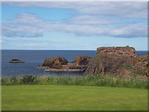 NT6779 : A View from the Glebe in  Dunbar by Jennifer Petrie