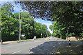 TL4459 : Along Madingley Road by John Sutton
