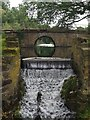 SE4017 : Weir and footbridge on the Lower Lake by Graham Hogg