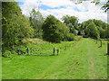 SU0398 : Former Thames & Severn Canal near South Cerney by Malc McDonald