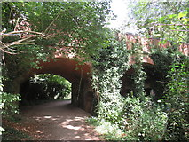 SU0597 : Path at South Cerney by Malc McDonald