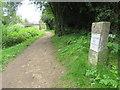 SU0797 : Thames & Severn Path near South Cerney by Malc McDonald