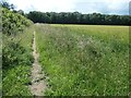 TA1367 : Field edge footpath, heading west to Sands Wood by Christine Johnstone