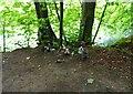 NO3200 : River bank path by Bill Kasman