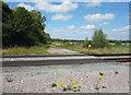 SU2789 : Still a crossing here by Des Blenkinsopp
