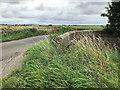 SD4315 : Sandy Way, Bridge over Drain by David Dixon
