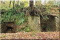 SX8256 : Lime kilns, Bow Creek by Derek Harper