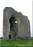 S1971 : Castles of Munster, Tullow, Tipperary (2) by Garry Dickinson