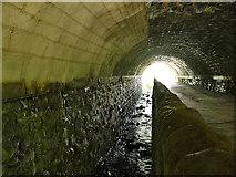 SE2425 : Under the railway bridge on Howley Mill Lane  by Stephen Craven