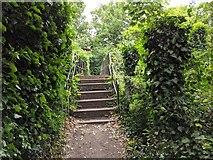 TQ5571 : Darent Valley Path - footbridge across Darent by Paul Williams