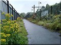NS5574 : Footpath beside the railway by Richard Sutcliffe