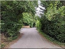TQ5571 : Darenth Road by Paul Williams