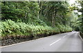 SD9928 : A6033 heading south towards Hebden Bridge north of Boston Hill footpath by Luke Shaw