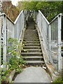 NS5866 : Steps up to the canal by Richard Sutcliffe