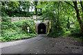 SK0957 : Swainsley Tunnel, Wetton by Brian Deegan