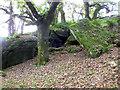 SX6672 : Pixies Cave Dartmeet Dartmoor - Nearer by Sloop John B