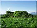 R9537 : Kilfeacle Motte & Bailey, Tipperary by Garry Dickinson