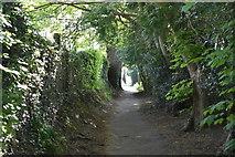 TQ5838 : Tunbridge Wells Circular Walk link path by N Chadwick
