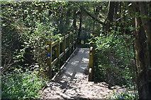 TQ5936 : Footbridge, HWLT by N Chadwick
