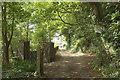 SX8950 : Private track to Castle Lodge by Derek Harper