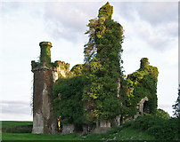 R9837 : Thomastown Castle, Tipperary (1) by Garry Dickinson