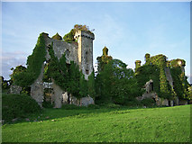R9837 : Thomastown Castle, Tipperary (2) by Garry Dickinson