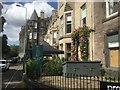 NT2472 : Black Ivy, Bruntsfield by Richard Webb