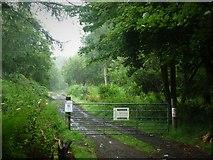 NS7791 : Woodland track in Fir Park by Alan Reid