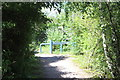 ST3385 : Celtic Trail about to meet Corporation Road by M J Roscoe