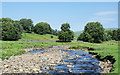 NY7539 : River South Tyne by Trevor Littlewood