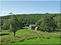SJ9775 : What remains of Hooleyhey Farm by Neil Theasby