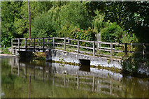 SU1734 : Footbridge beside the ford in Gaters Lane by David Martin
