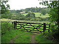 SP3625 : Gate near Enstone by Malc McDonald