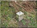 SD2879 : Ulverston Fundamental Benchmark by Adrian Taylor