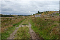 NJ0748 : Abandoned Logs by Anne Burgess