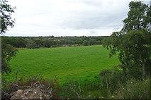 NJ1249 : Field near Ballachraggan by Anne Burgess
