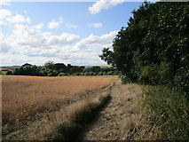 SP9599 : The Jurassic Way at Wakerley by Jonathan Thacker
