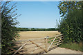 SU2191 : View from a gate on Friars Hill by Des Blenkinsopp