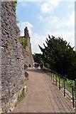NZ1700 : Castle Walk, Richmond by habiloid