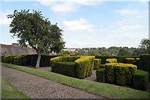 NZ1700 : The Cockpit Garden, Richmond Castle by habiloid