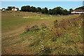 SX9365 : Cricket match on Walls Hill by Derek Harper