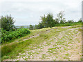 NZ5703 : Viewpoint on a forestry track, Ingleby Greenhow by Humphrey Bolton