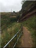 NT6779 : Coast path, Dunbar by Richard Webb