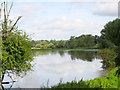 TL8299 : Flooded Water meadow by David Pashley