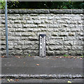 NZ5921 : Boundary post. Kirkleatham by Humphrey Bolton